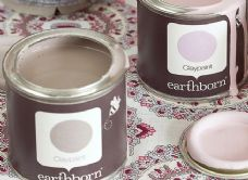 Earthborn Natural Paints